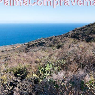 Venta De Terrenos En Villademazo Tenerife E Viviendas